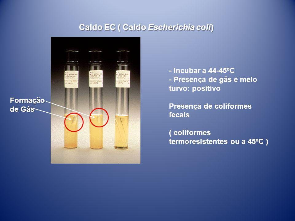 Caldo EC ( Caldo Escherichia coli) - Incubar a 44-45ºC - Presença de gás e meio turvo: positivo Presença de coliformes fecais ( coliformes termoresist