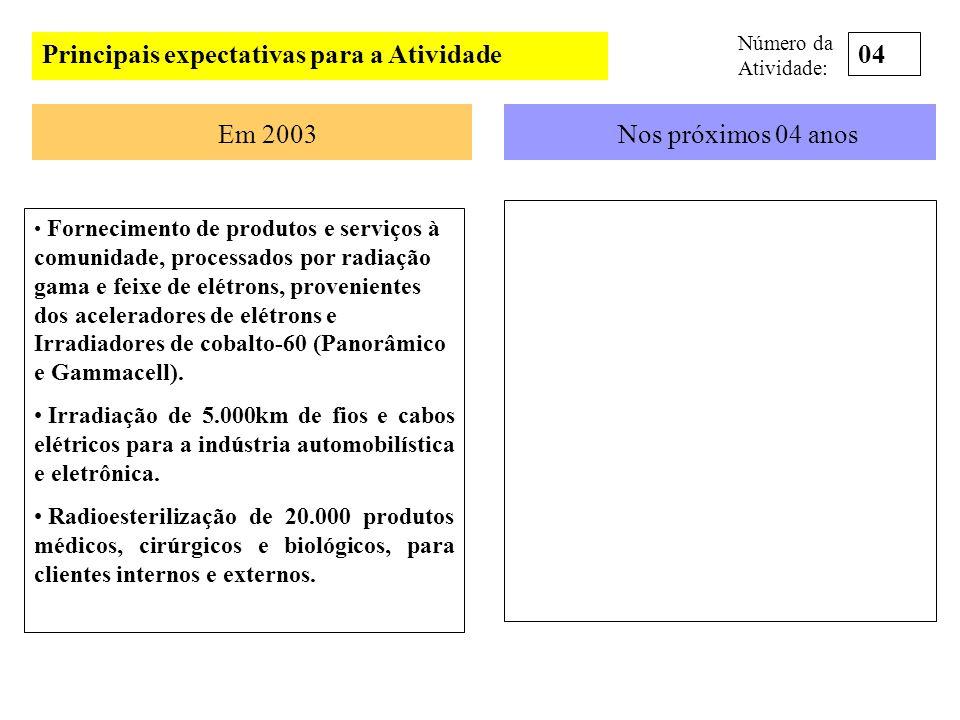 Principais expectativas para a Atividade Em 2003Nos próximos 04 anos Fornecimento de produtos e serviços à comunidade, processados por radiação gama e