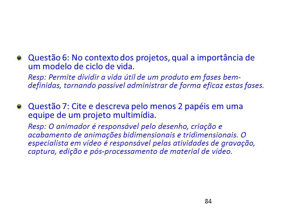 84 Exercício 1 - Resolução Questão 6: No contexto dos projetos, qual a importância de um modelo de ciclo de vida.