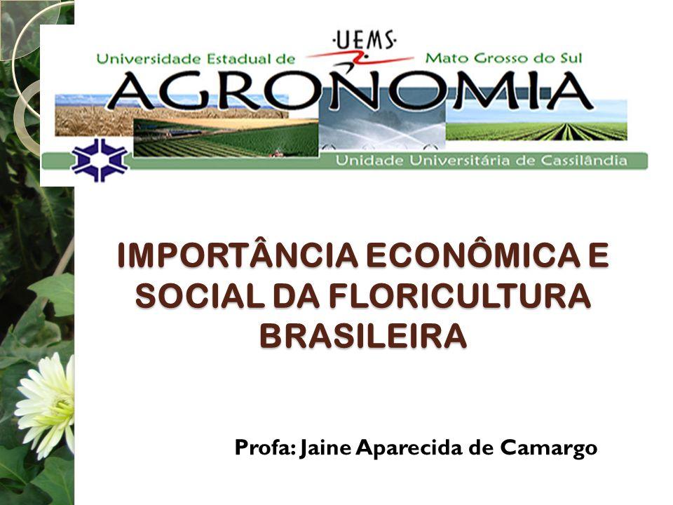 IMPORTÂNCIA ECONÔMICA E SOCIAL DA FLORICULTURA BRASILEIRA Profa: Jaine Aparecida de Camargo