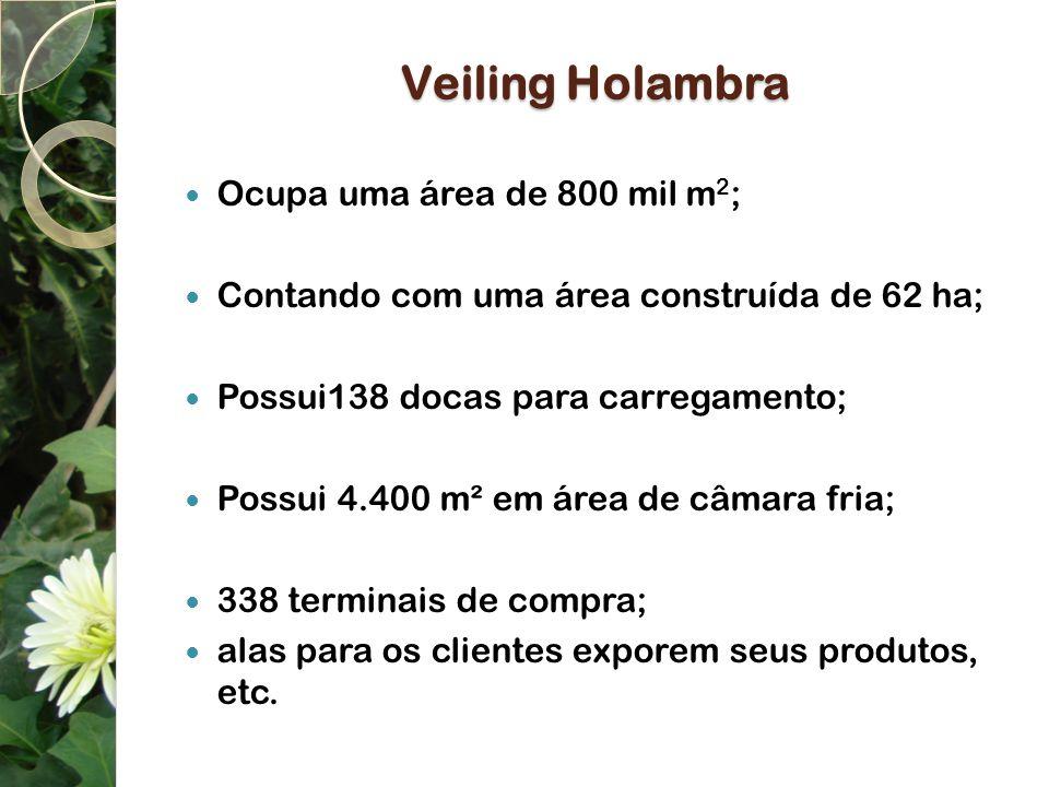 Veiling Holambra Ocupa uma área de 800 mil m 2 ; Contando com uma área construída de 62 ha; Possui138 docas para carregamento; Possui 4.400 m² em área