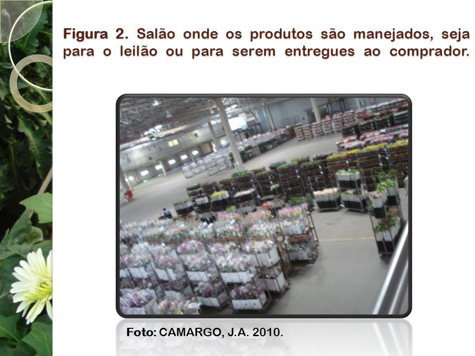 Figura 2. Salão onde os produtos são manejados, seja para o leilão ou para serem entregues ao comprador. Foto: CAMARGO, J.A. 2010.
