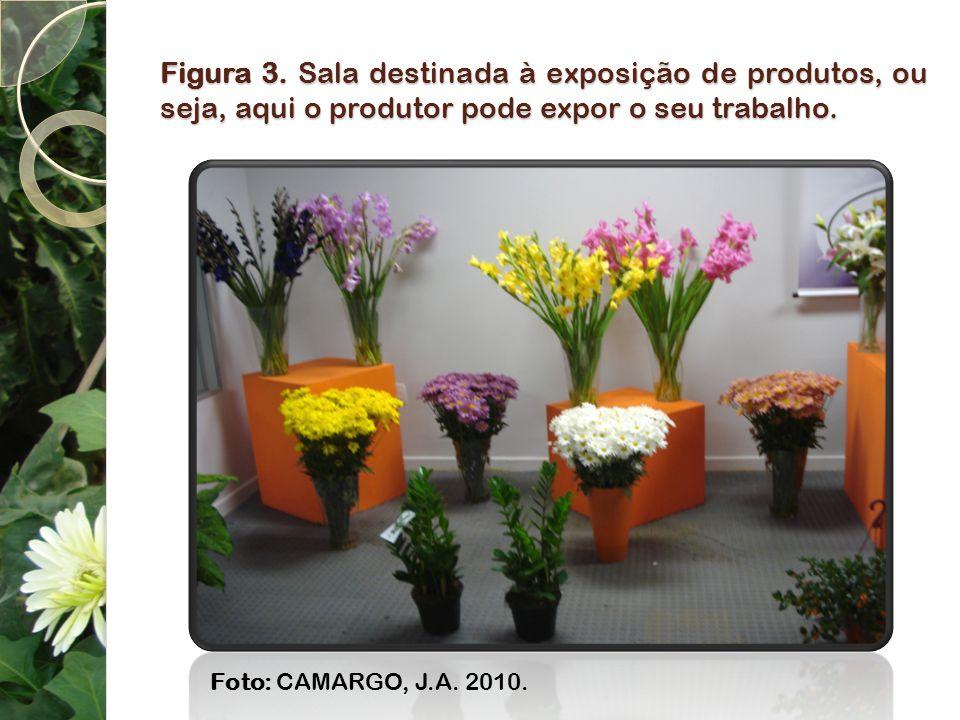 Figura 3. Sala destinada à exposição de produtos, ou seja, aqui o produtor pode expor o seu trabalho. Foto: CAMARGO, J.A. 2010.