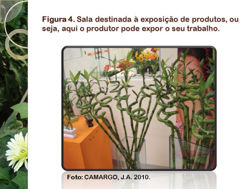 Figura 4. Sala destinada à exposição de produtos, ou seja, aqui o produtor pode expor o seu trabalho. Foto: CAMARGO, J.A. 2010.