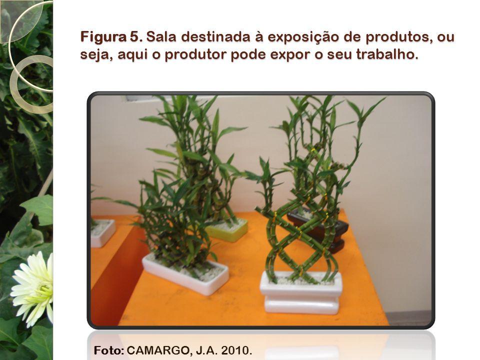Figura 5. Sala destinada à exposição de produtos, ou seja, aqui o produtor pode expor o seu trabalho. Foto: CAMARGO, J.A. 2010.