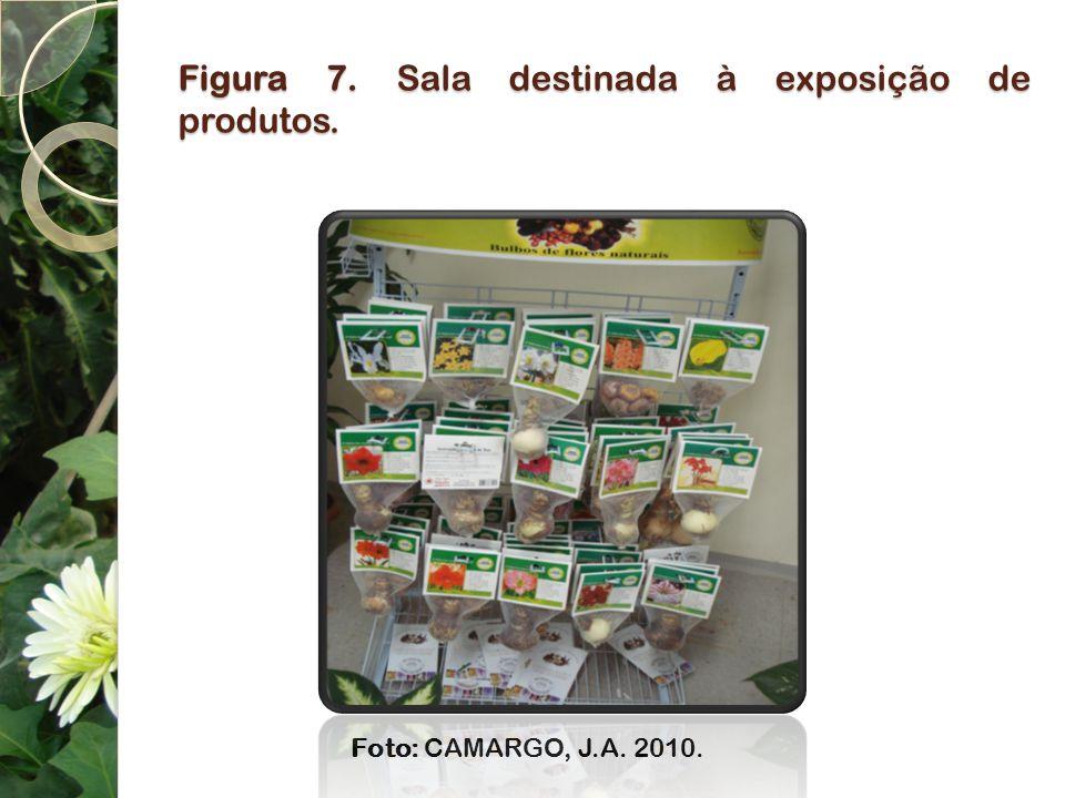 Figura 7. Sala destinada à exposição de produtos. Foto: CAMARGO, J.A. 2010.