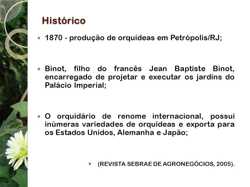 Histórico 1870 - produção de orquídeas em Petrópolis/RJ; Binot, filho do francês Jean Baptiste Binot, encarregado de projetar e executar os jardins do