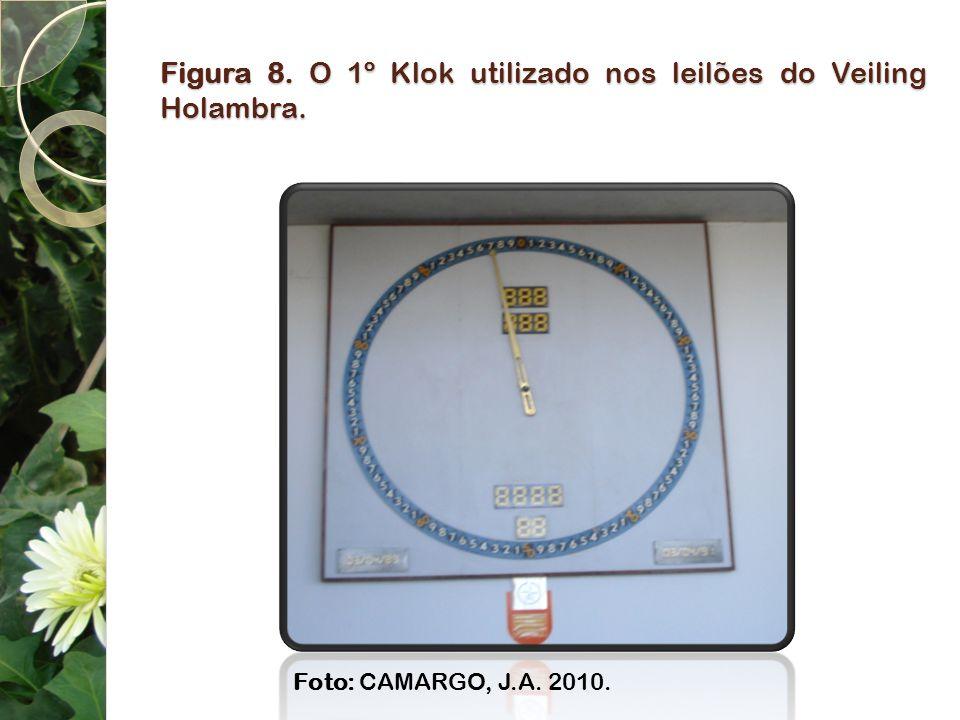 Figura 8. O 1º Klok utilizado nos leilões do Veiling Holambra. Foto: CAMARGO, J.A. 2010.