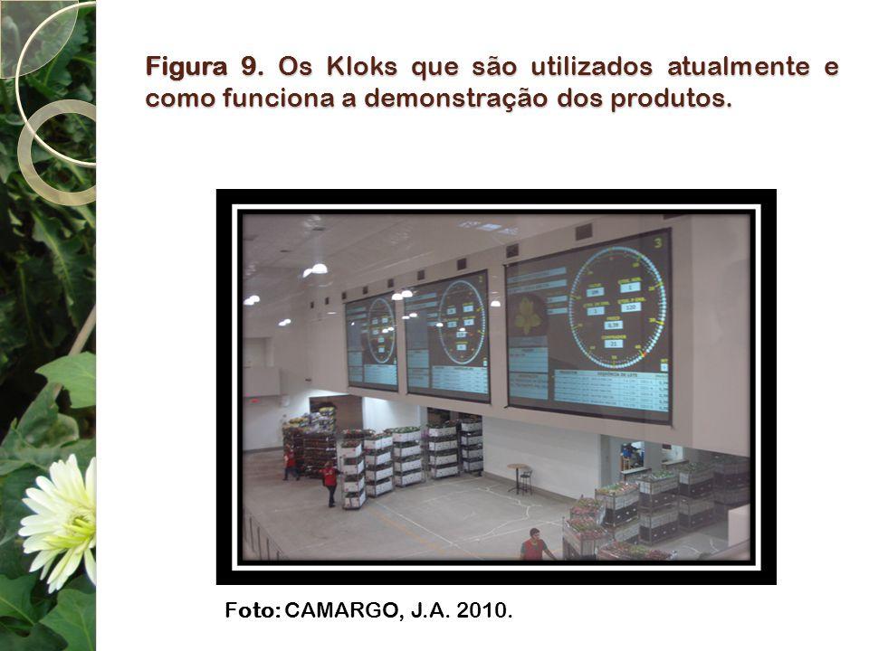 Figura 9. Os Kloks que são utilizados atualmente e como funciona a demonstração dos produtos. Foto: CAMARGO, J.A. 2010.