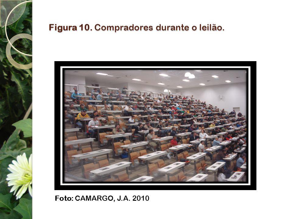 Figura 10. Compradores durante o leilão. Foto: CAMARGO, J.A. 2010