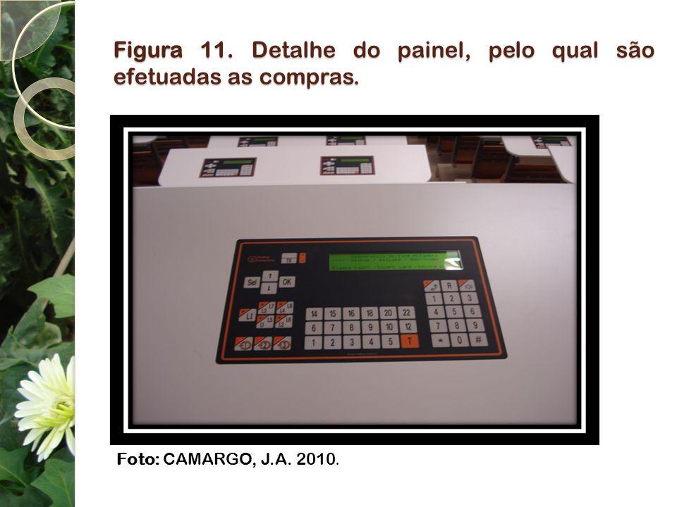 Figura 11. Detalhe do painel, pelo qual são efetuadas as compras. Foto: CAMARGO, J.A. 2010.