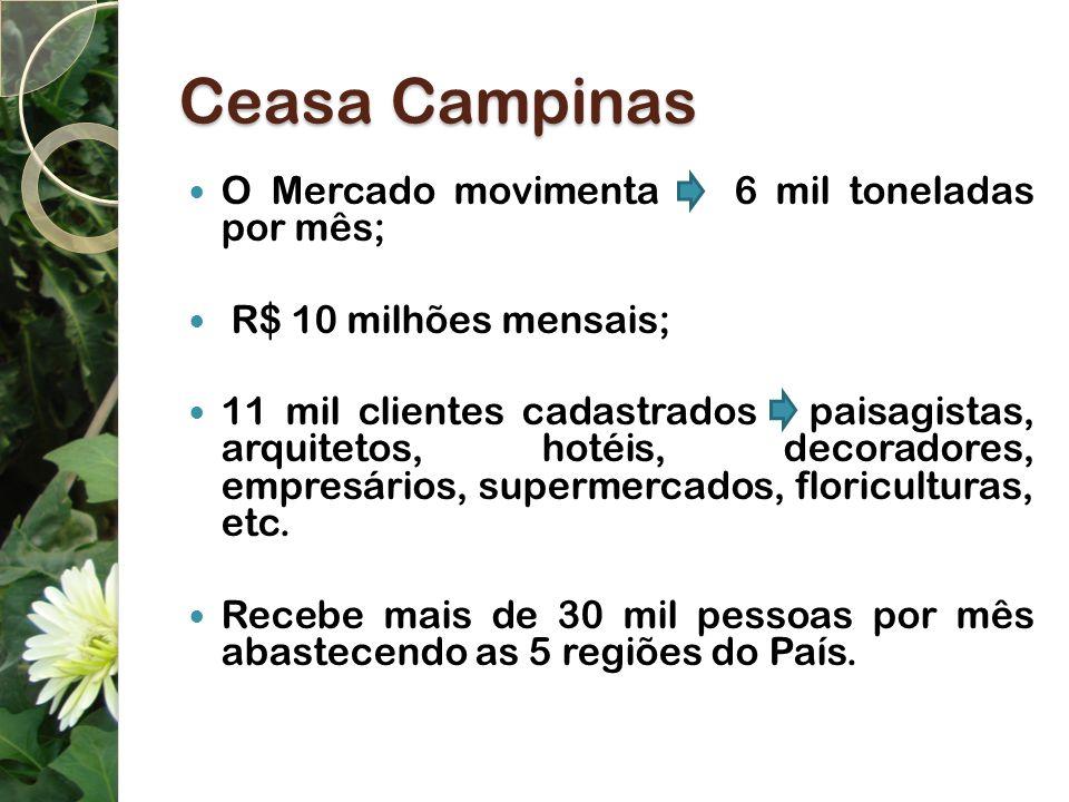 Ceasa Campinas O Mercado movimenta 6 mil toneladas por mês; R$ 10 milhões mensais; 11 mil clientes cadastrados paisagistas, arquitetos, hotéis, decora