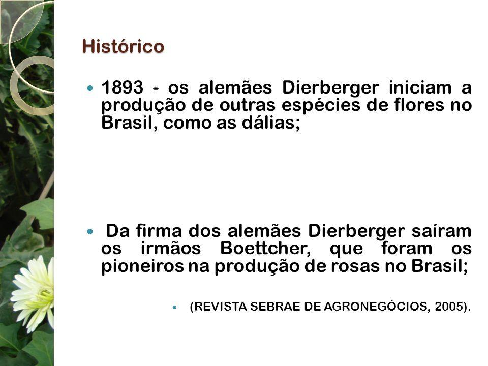 Histórico 1893 - os alemães Dierberger iniciam a produção de outras espécies de flores no Brasil, como as dálias; Da firma dos alemães Dierberger saír