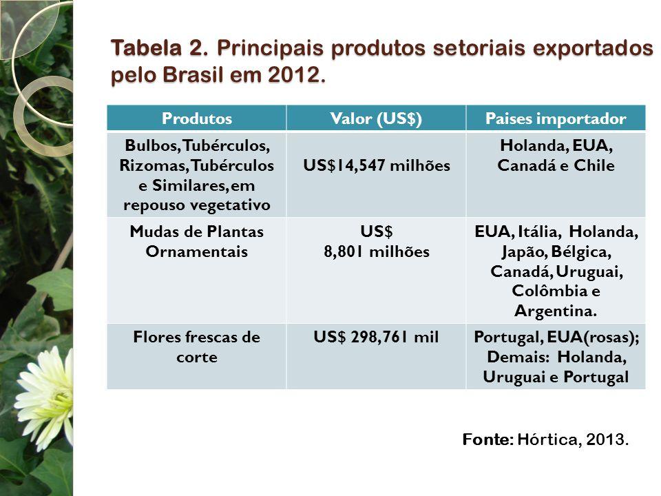 Tabela 2. Principais produtos setoriais exportados pelo Brasil em 2012. ProdutosValor (US$)Paises importador Bulbos, Tubérculos, Rizomas, Tubérculos e