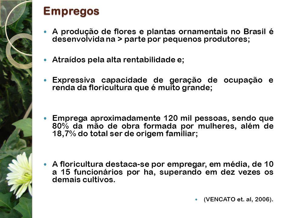 Empregos A produção de flores e plantas ornamentais no Brasil é desenvolvida na > parte por pequenos produtores; Atraídos pela alta rentabilidade e; E