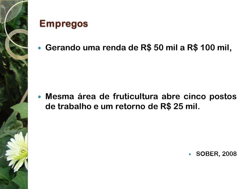 Empregos Gerando uma renda de R$ 50 mil a R$ 100 mil, Mesma área de fruticultura abre cinco postos de trabalho e um retorno de R$ 25 mil. SOBER, 2008