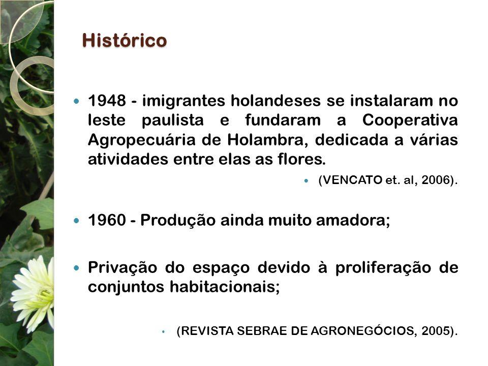 Histórico 1991 - foi criada uma empresa para se dedicar especificamente a comercialização dos produtos; 2000 - a floricultura passa a fazer parte da agenda de políticas públicas, com a implantação do Programa de Desenvolvimento de Flores e Plantas Ornamentais do Ministério da Agricultura.
