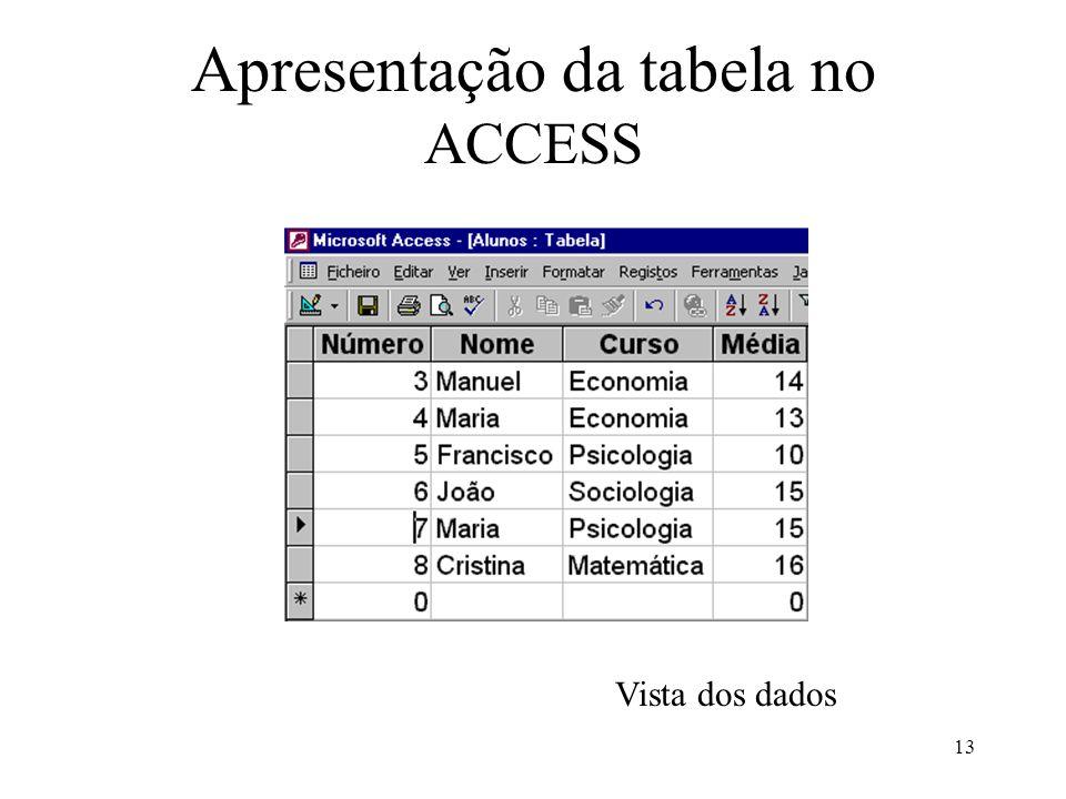 13 Apresentação da tabela no ACCESS Vista dos dados