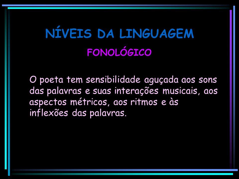 NÍVEIS DA LINGUAGEM FONOLÓGICO O poeta tem sensibilidade aguçada aos sons das palavras e suas interações musicais, aos aspectos métricos, aos ritmos e