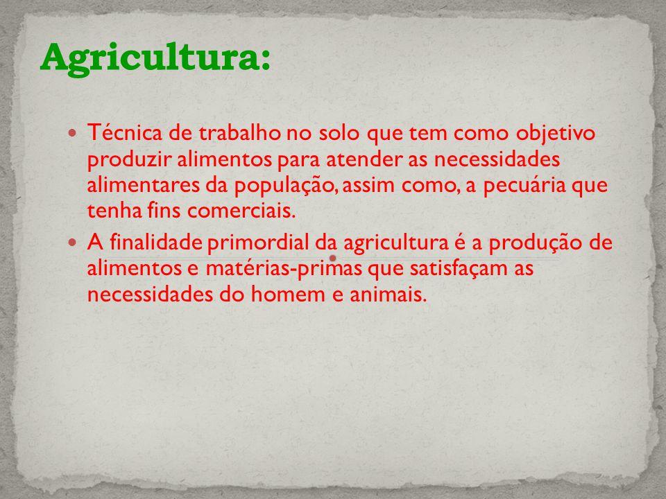 Técnica de trabalho no solo que tem como objetivo produzir alimentos para atender as necessidades alimentares da população, assim como, a pecuária que tenha fins comerciais.