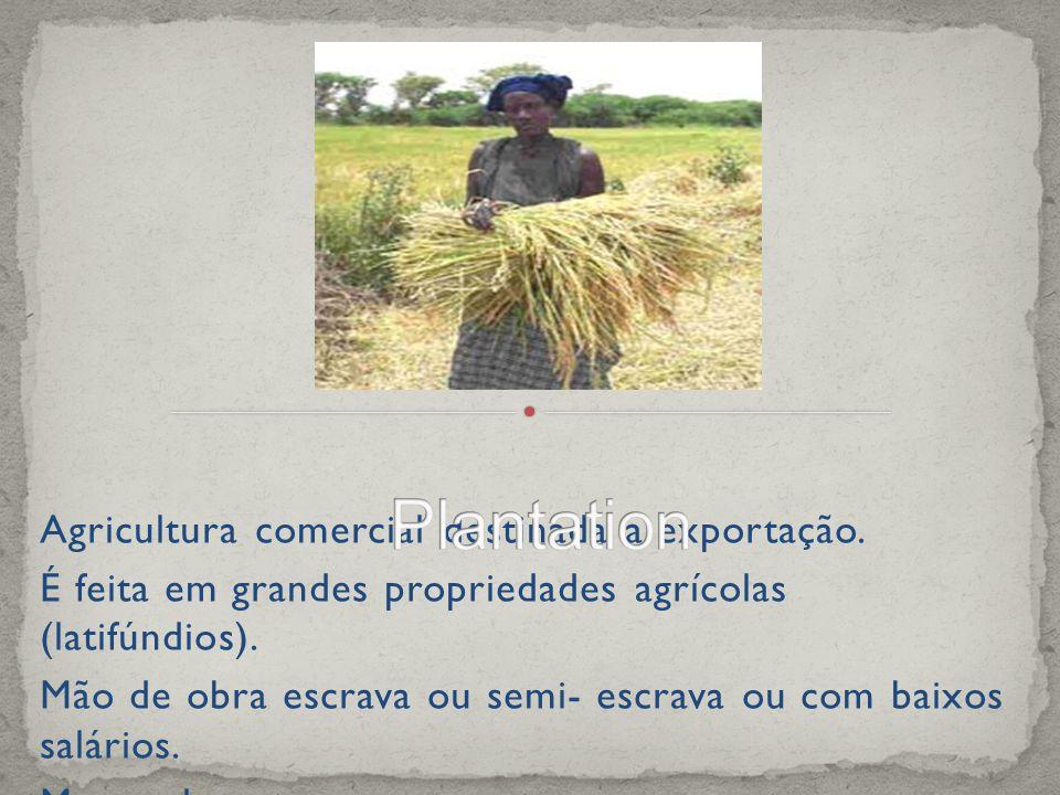 Agricultura comercial destinada a exportação.
