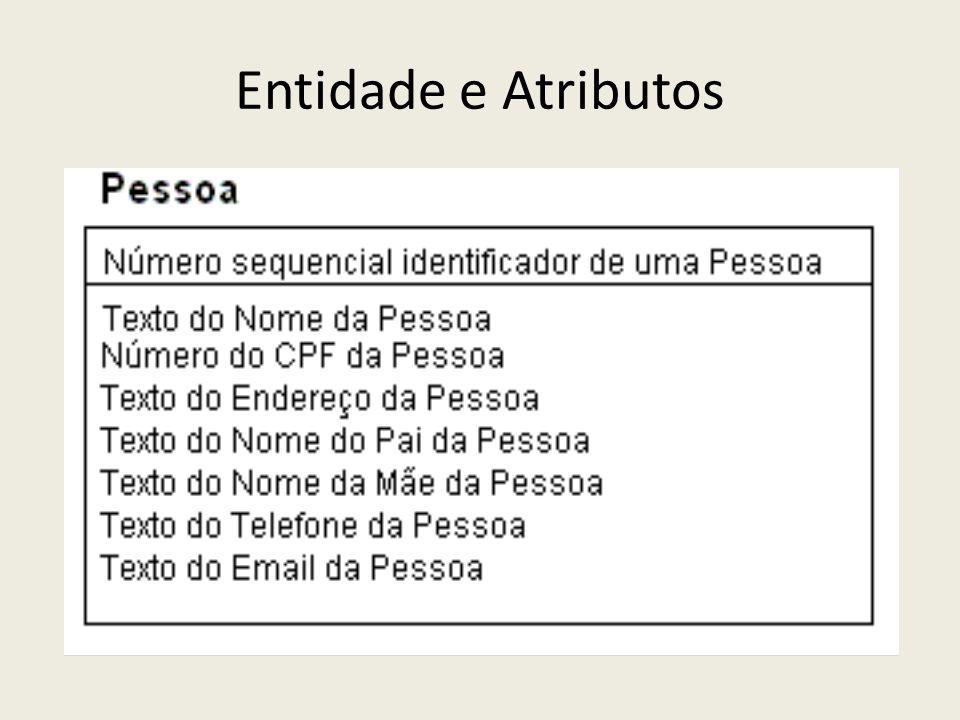 Características dos Atributos Domínio: conjunto de valores possíveis do atributo Tipo: É a natureza da informação que o atributo armazena Texto, Número, Indicador (sim/não), Código, Data, Hora, etc.