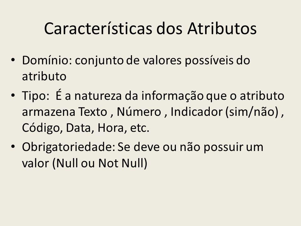 Características dos Atributos Domínio: conjunto de valores possíveis do atributo Tipo: É a natureza da informação que o atributo armazena Texto, Númer