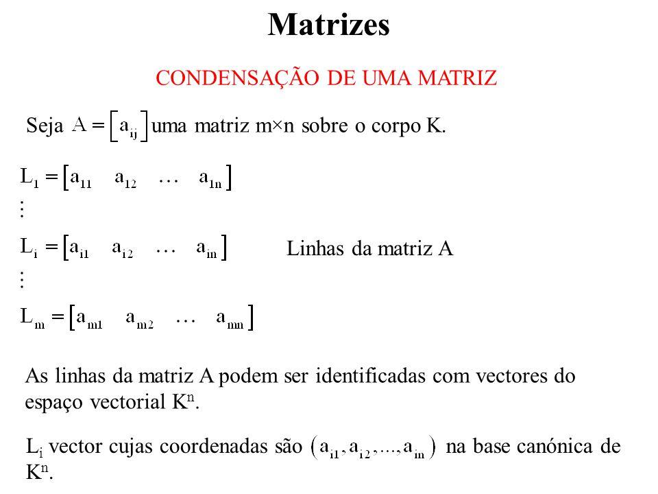Matrizes CONDENSAÇÃO DE UMA MATRIZ As linhas da matriz A podem ser identificadas com vectores do espaço vectorial K n.