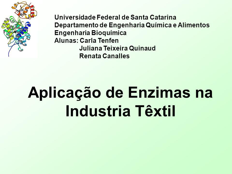 Aplicação de Enzimas na Industria Têxtil Universidade Federal de Santa Catarina Departamento de Engenharia Química e Alimentos Engenharia Bioquímica A