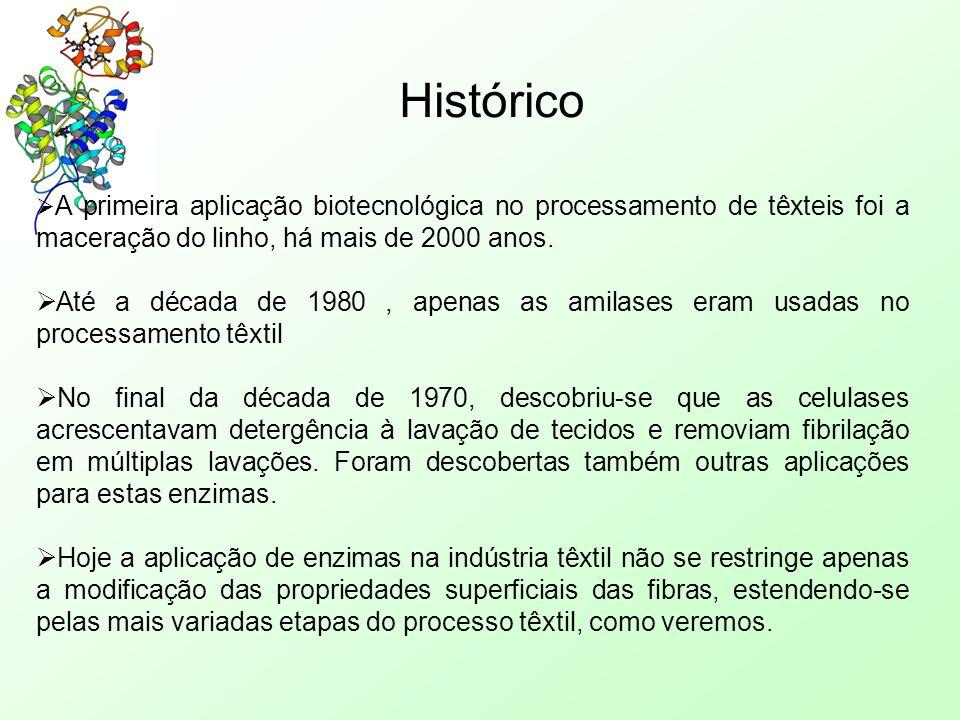 Histórico  A primeira aplicação biotecnológica no processamento de têxteis foi a maceração do linho, há mais de 2000 anos.  Até a década de 1980, ap