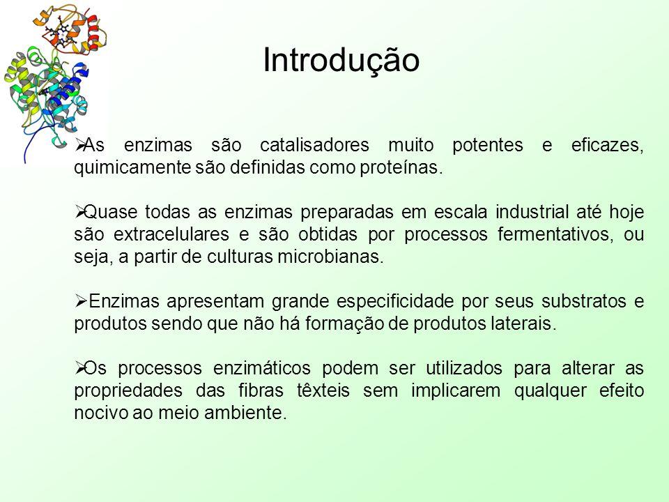 Introdução  As enzimas são catalisadores muito potentes e eficazes, quimicamente são definidas como proteínas.  Quase todas as enzimas preparadas em