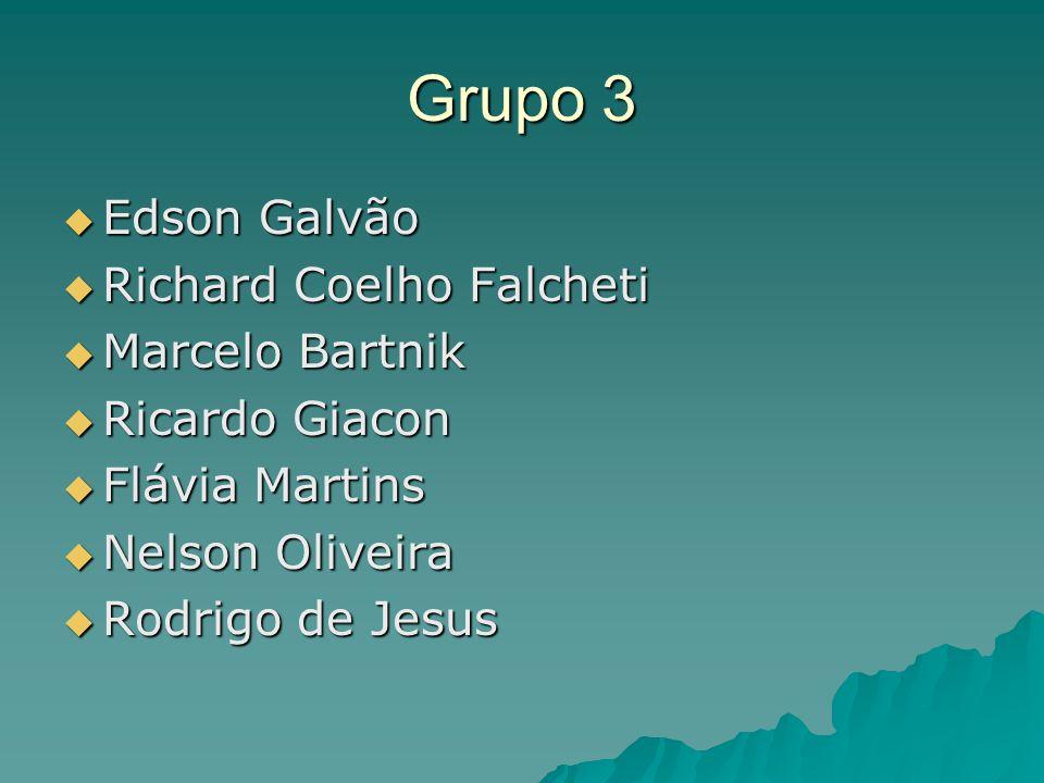 Grupo 3  Edson Galvão  Richard Coelho Falcheti  Marcelo Bartnik  Ricardo Giacon  Flávia Martins  Nelson Oliveira  Rodrigo de Jesus