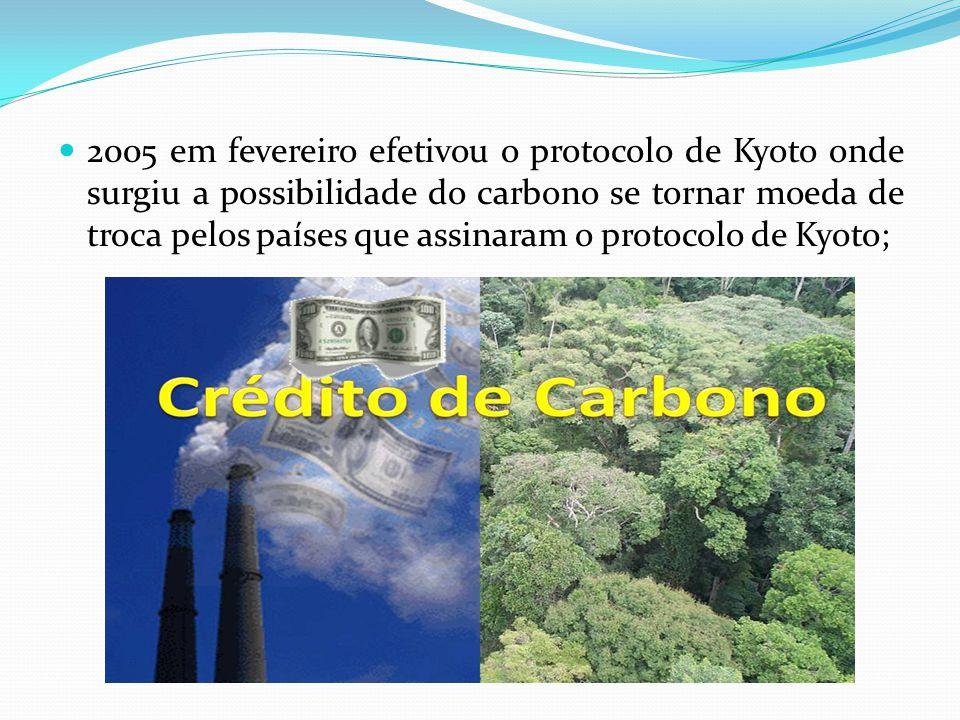 2005 em fevereiro efetivou o protocolo de Kyoto onde surgiu a possibilidade do carbono se tornar moeda de troca pelos países que assinaram o protocolo