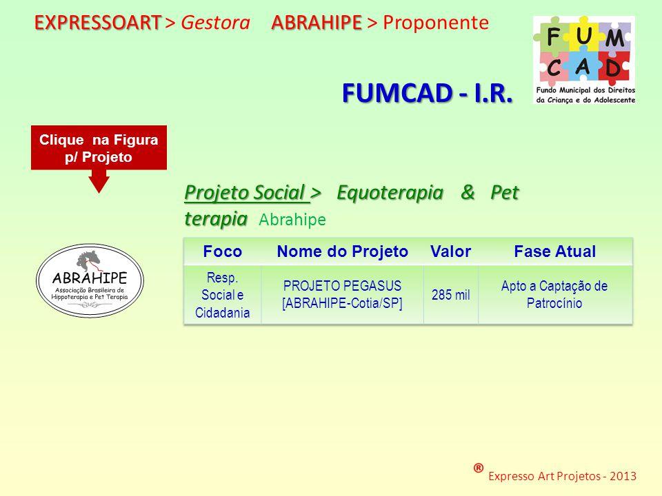 ® Expresso Art Projetos - 2013 http://www.expressoart.com.br/abrahipe.pps Projeto Social > Equoterapia & Pet terapia Projeto Social > Equoterapia & Pe