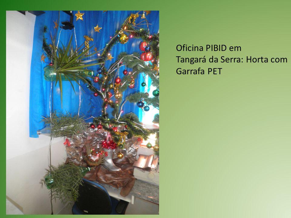 Oficina PIBID em Tangará da Serra: Horta com Garrafa PET