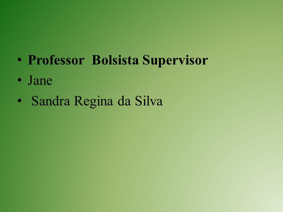 Professor Bolsista Supervisor Jane Sandra Regina da Silva