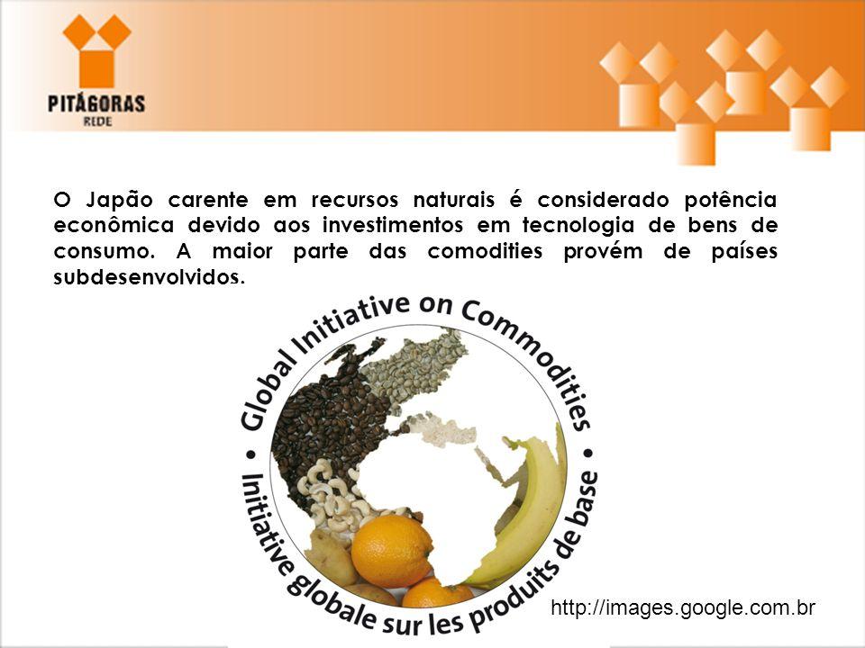 O Japão carente em recursos naturais é considerado potência econômica devido aos investimentos em tecnologia de bens de consumo. A maior parte das com