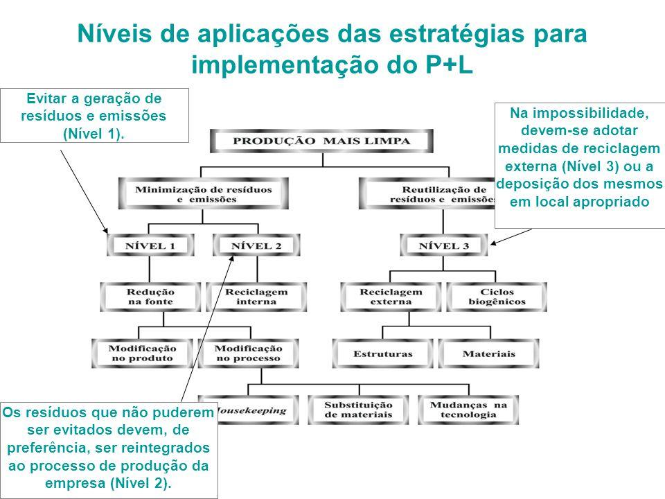 Níveis de aplicações das estratégias para implementação do P+L Evitar a geração de resíduos e emissões (Nível 1).