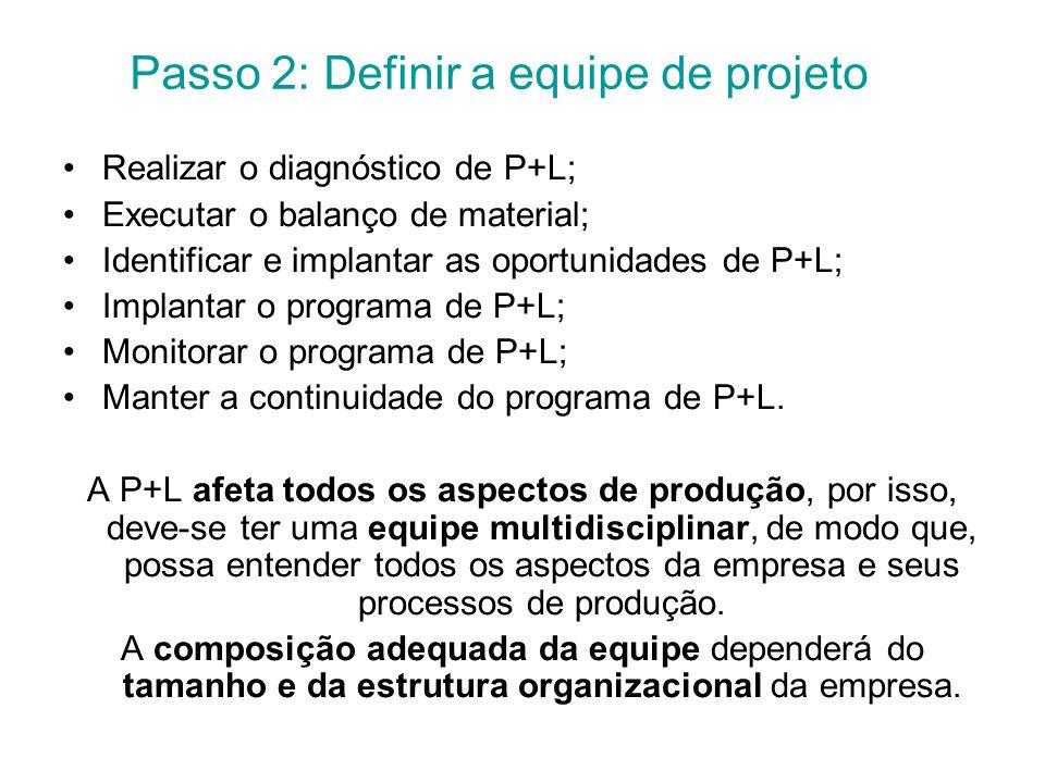 Passo 2: Definir a equipe de projeto Realizar o diagnóstico de P+L; Executar o balanço de material; Identificar e implantar as oportunidades de P+L; Implantar o programa de P+L; Monitorar o programa de P+L; Manter a continuidade do programa de P+L.