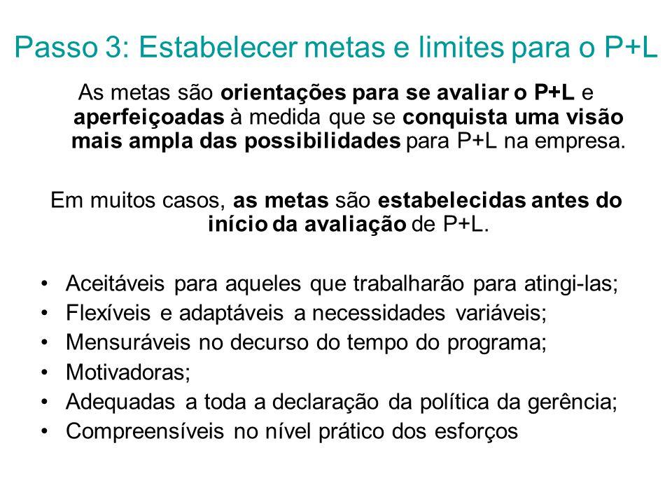 Passo 3: Estabelecer metas e limites para o P+L As metas são orientações para se avaliar o P+L e aperfeiçoadas à medida que se conquista uma visão mais ampla das possibilidades para P+L na empresa.