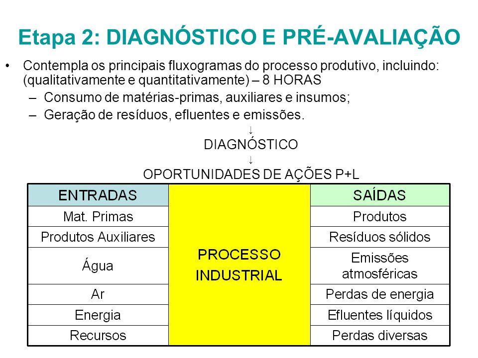 Etapa 2: DIAGNÓSTICO E PRÉ-AVALIAÇÃO Contempla os principais fluxogramas do processo produtivo, incluindo: (qualitativamente e quantitativamente) – 8 HORAS –Consumo de matérias-primas, auxiliares e insumos; –Geração de resíduos, efluentes e emissões.