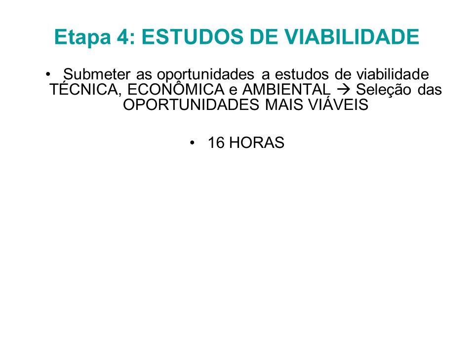 Etapa 4: ESTUDOS DE VIABILIDADE Submeter as oportunidades a estudos de viabilidade TÉCNICA, ECONÔMICA e AMBIENTAL  Seleção das OPORTUNIDADES MAIS VIÁVEIS 16 HORAS