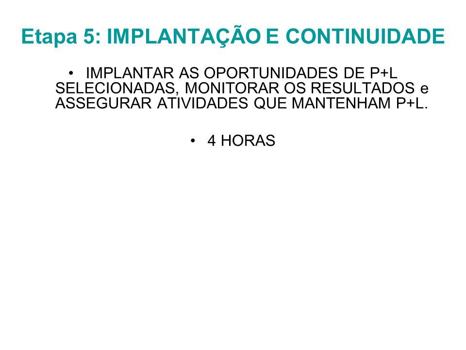 Etapa 5: IMPLANTAÇÃO E CONTINUIDADE IMPLANTAR AS OPORTUNIDADES DE P+L SELECIONADAS, MONITORAR OS RESULTADOS e ASSEGURAR ATIVIDADES QUE MANTENHAM P+L.