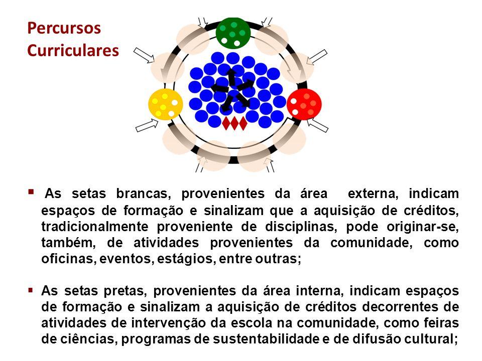  As setas brancas, provenientes da área externa, indicam espaços de formação e sinalizam que a aquisição de créditos, tradicionalmente proveniente de