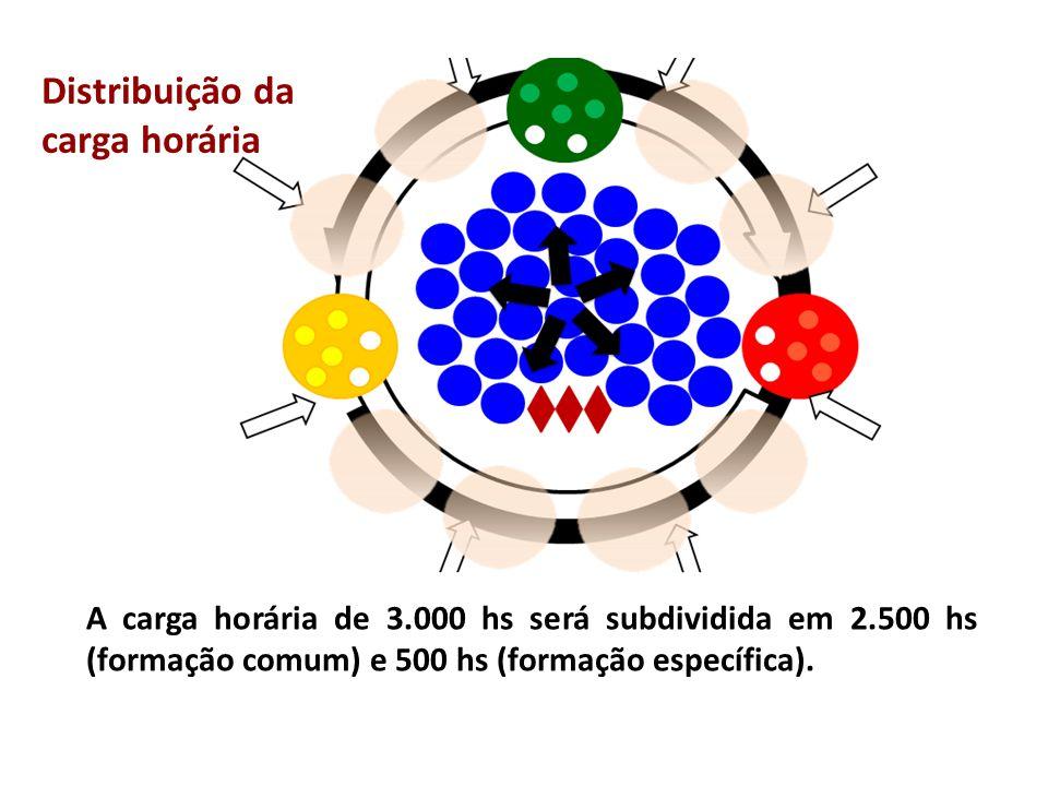 A carga horária de 3.000 hs será subdividida em 2.500 hs (formação comum) e 500 hs (formação específica). Distribuição da carga horária