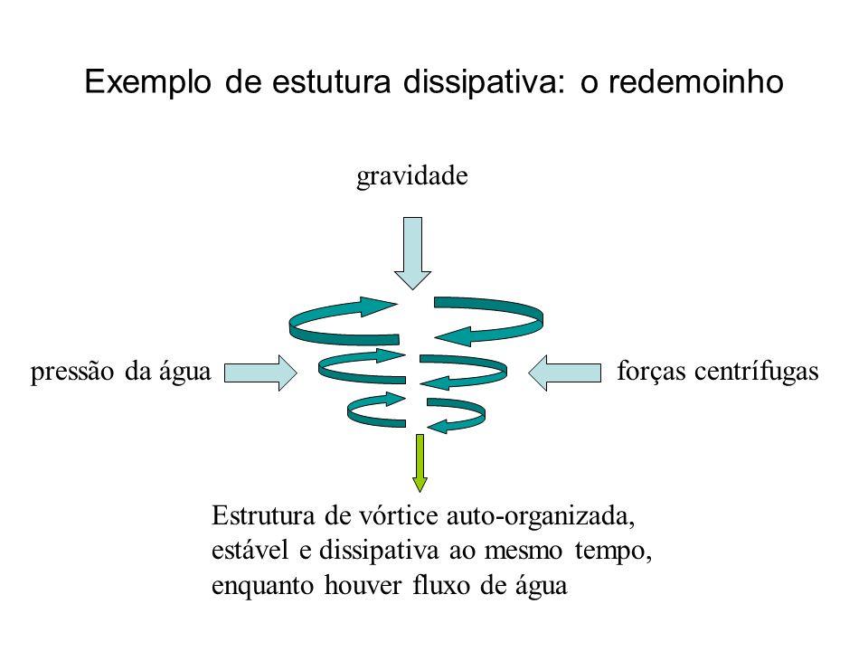 Exemplo de estutura dissipativa: o redemoinho gravidade forças centrífugaspressão da água Estrutura de vórtice auto-organizada, estável e dissipativa