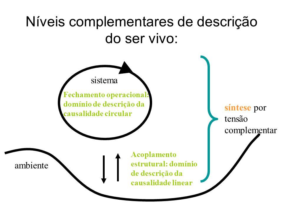 Níveis complementares de descrição do ser vivo: ambiente sistema Fechamento operacional: domínio de descrição da causalidade circular Acoplamento estr