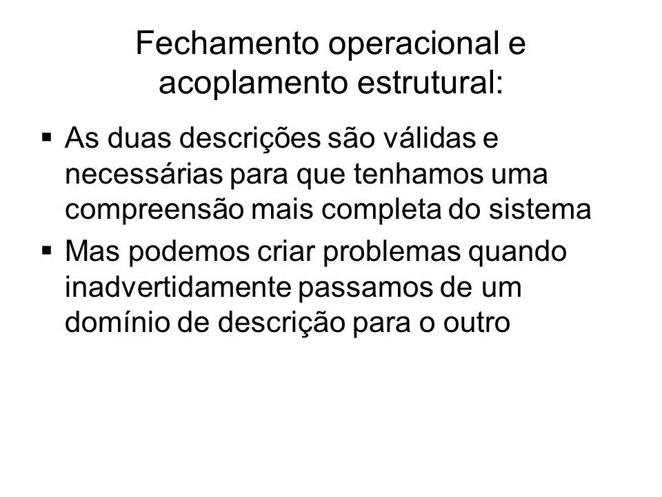 Fechamento operacional e acoplamento estrutural:  As duas descrições são válidas e necessárias para que tenhamos uma compreensão mais completa do sis