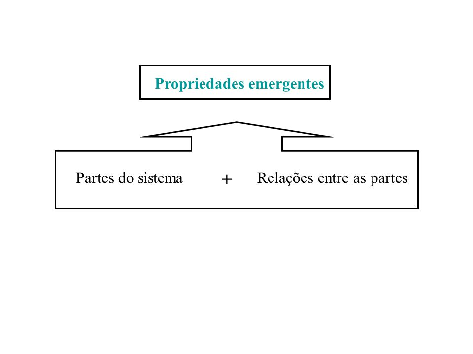 Partes do sistemaRelações entre as partes + Propriedades emergentes