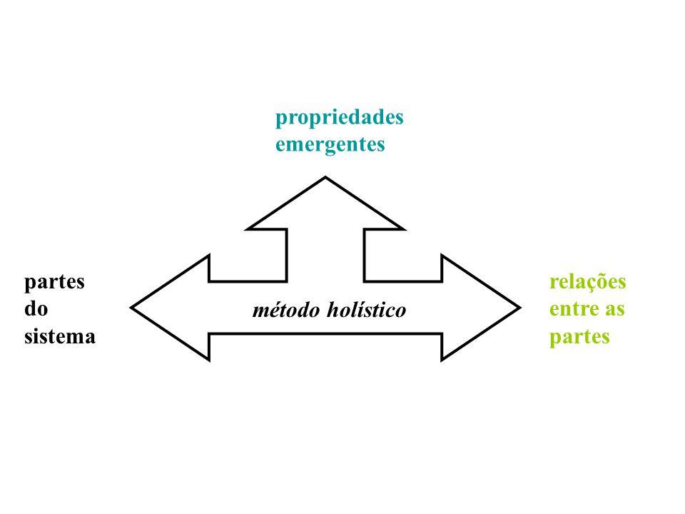 partes do sistema relações entre as partes propriedades emergentes método holístico